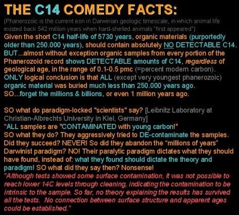 C14comedy