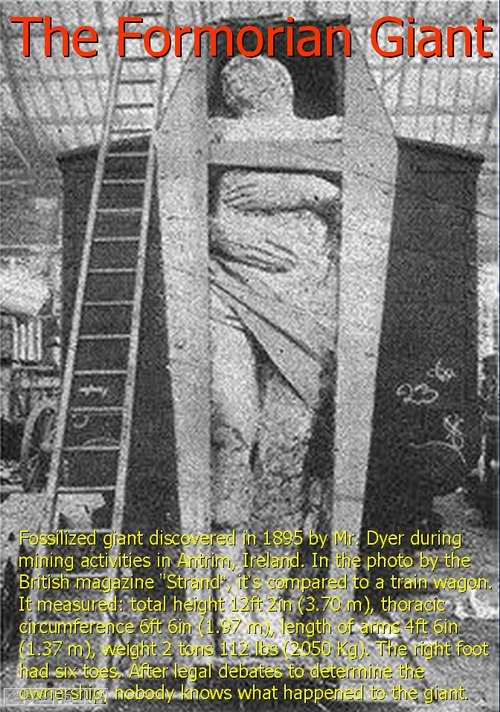 Giants, NOT ALLOWED by Smithsonian Institute, Disappeared From History as Reported in Old News!