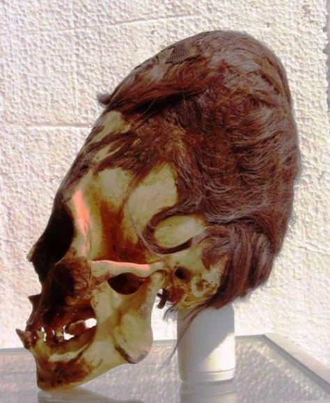 redhairgiantskull