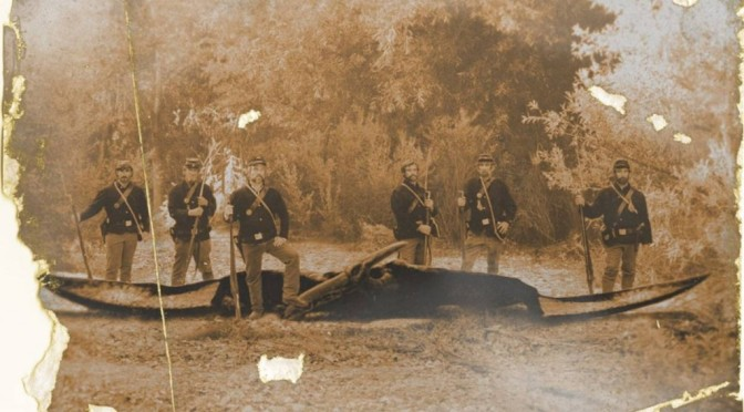 """La photo du ptérosaure prise pendant la guerre civile que personne ne devrait voir! """"- A lire!"""