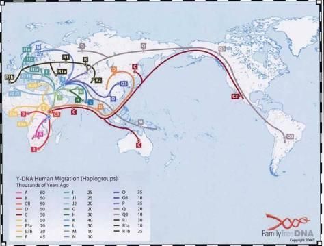 DNAmap