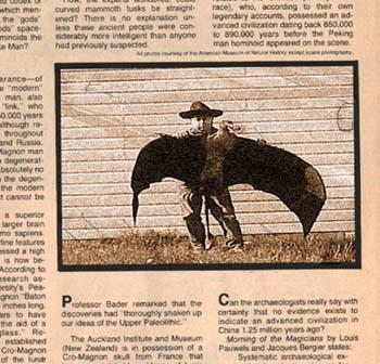 birdcowboy
