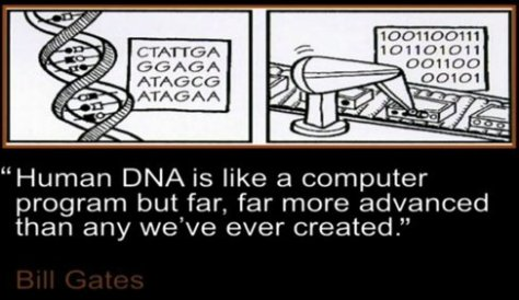 DNAComputerProgramGates