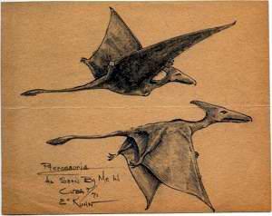 PterosaurDwg