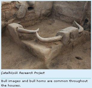 bull-horns3