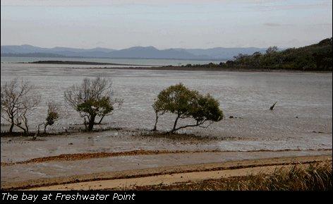 freshwaterpointBay