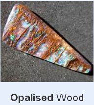 OpalisedWood