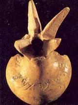 ivorypomegranate