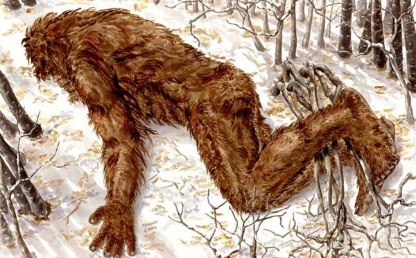 """I Shot Bigfoot!""- A genuine report?"