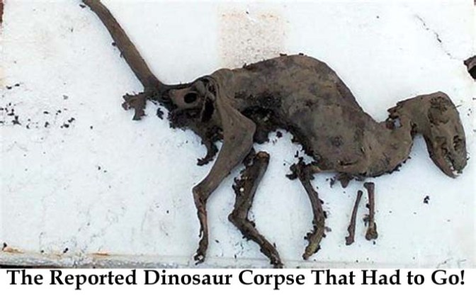 Small Dinosaur Corpse Found in India Safely Secured by Darwinians Into Forgetfulness