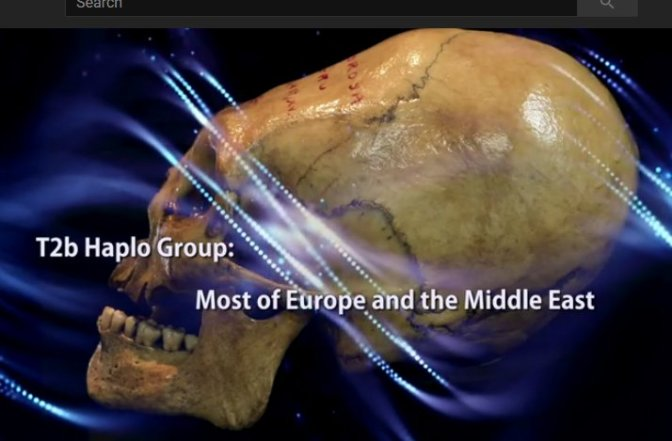 Paracas Skulls DNA Analysis Shows European & Mid Eastern DNA but Researchers Disagree