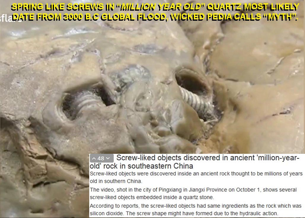 "Screw-like Objects Discovered in Ancient ""Million-year-old"" Rock in Southeastern China From Global Flood Mis-identified"